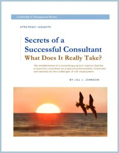 WHITE PAPER - Secrets of a Successful Consultant - COVER - FRAMED